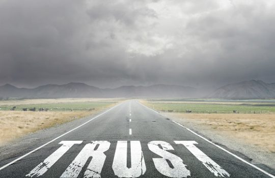 As a leader, do each of your team members trust you?